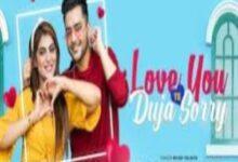 Photo of Love You Te Duja Sorry Lyrics –  Ayush Talniya