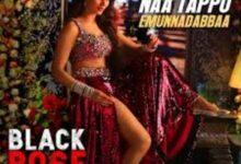 Photo of Naa Tappu Emunnadabbaa Lyrics –  Black Rose Movie