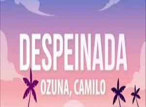 Photo of Despeinada  Lyrics –  Ozuna