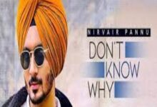 Photo of DON'T KNOW WHY  Lyrics –   NIRVAIR PANNU