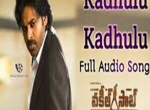 Photo of Kadhulu Kadhulu Lyrics –    Vakeel Saab Movie