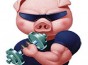 Photo of Piggy Oink Lyrics – Oinker