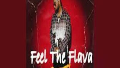Photo of Feel The Flava (It'z All Good) Lyrics – Karan Aujla
