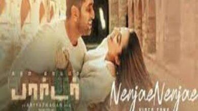 Photo of Nenjae Nenjae Lyrics – Borrder (2021) Tamil Movie